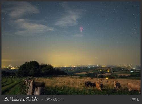 Les Vaches et le Farfadet