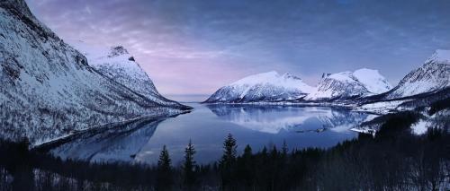 Fjord Senja